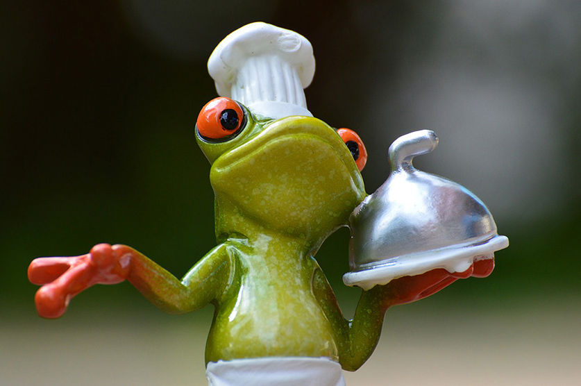 Frog with Catering Dish
