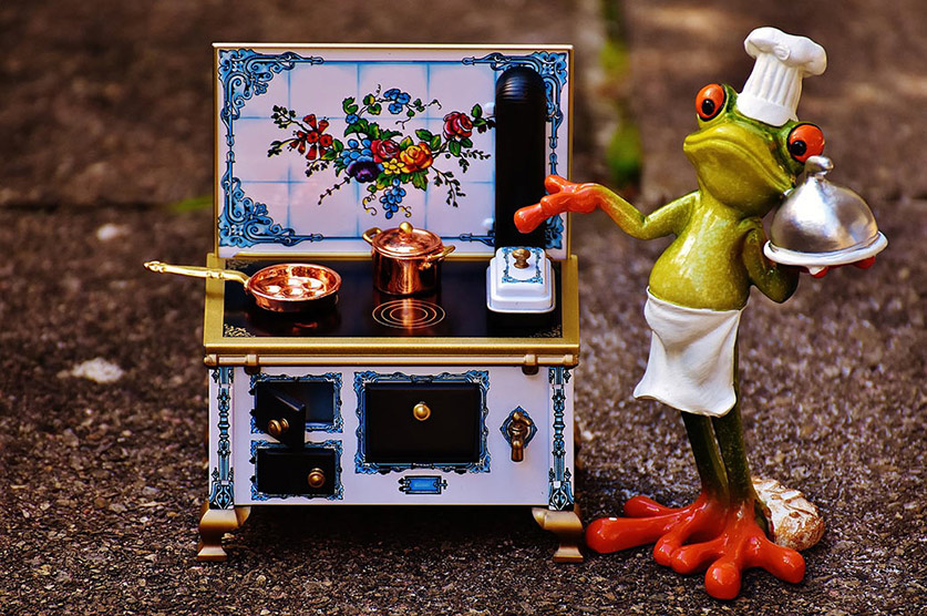 Frog Standing with Gas Stove